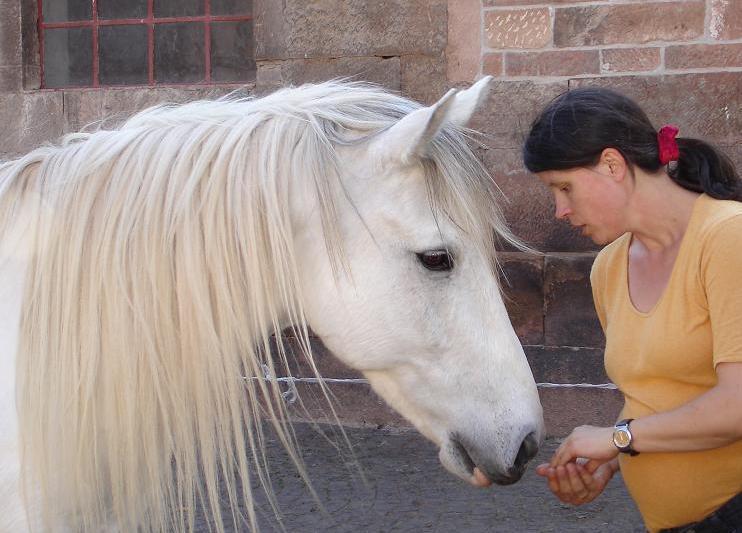 Kann man Tierkommunikation lernen?