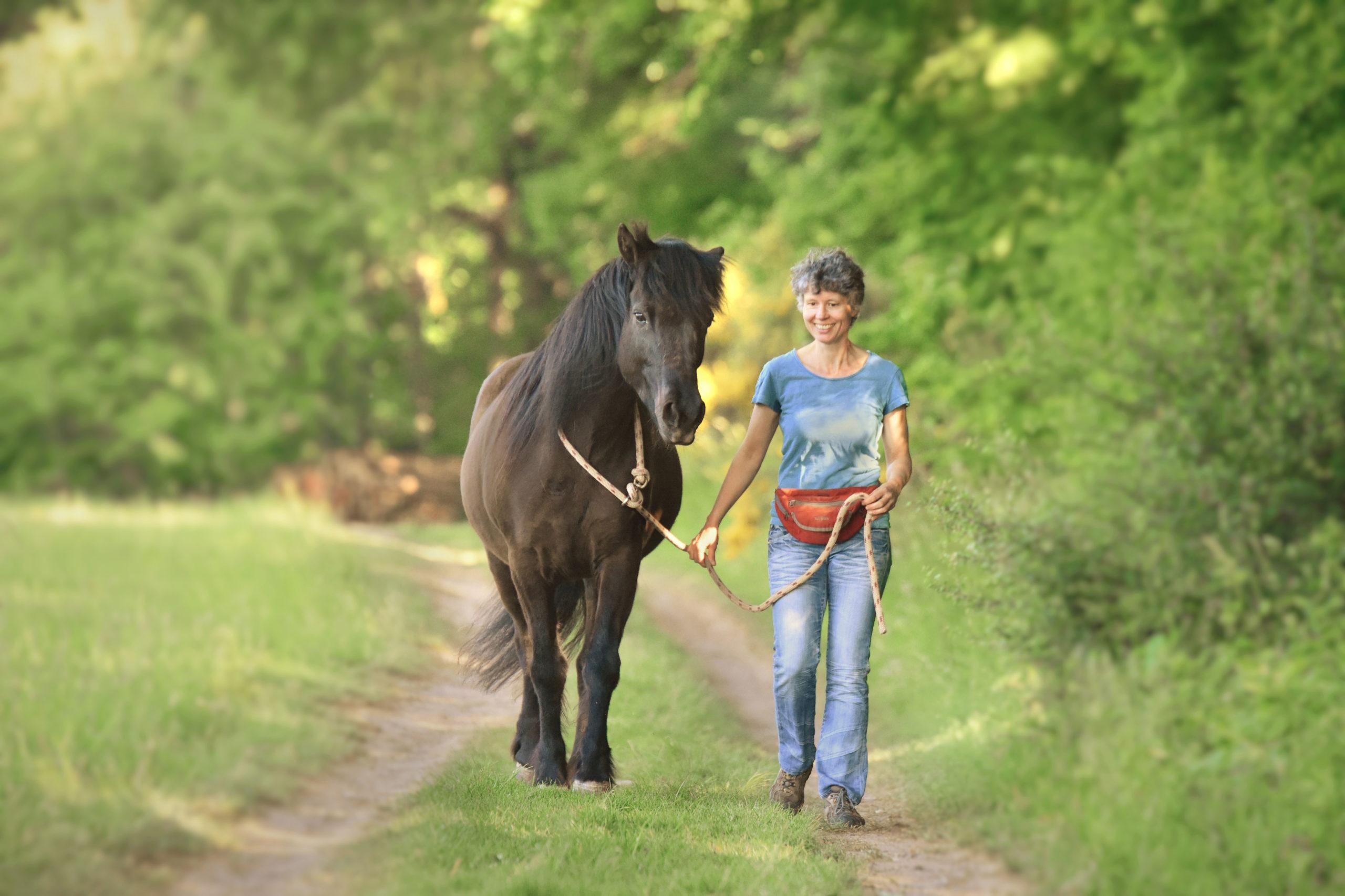 Pferd am Halsstrick
