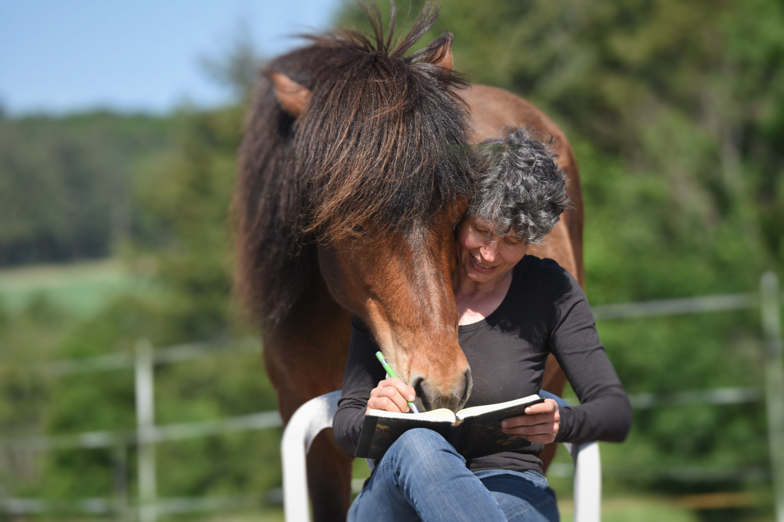 Wenn Pferde Geschichten schreiben