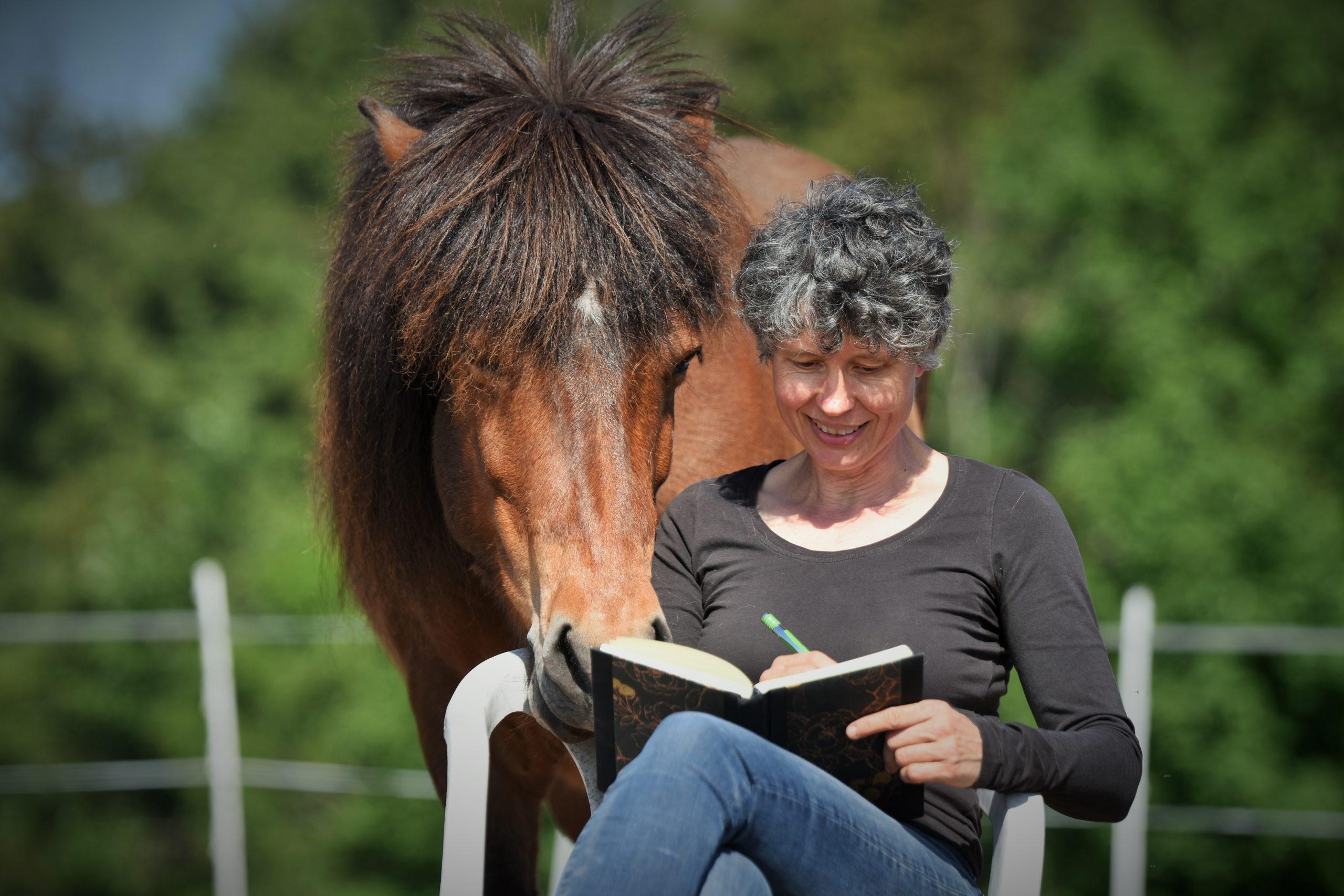 Buch-schreiben-Pferd