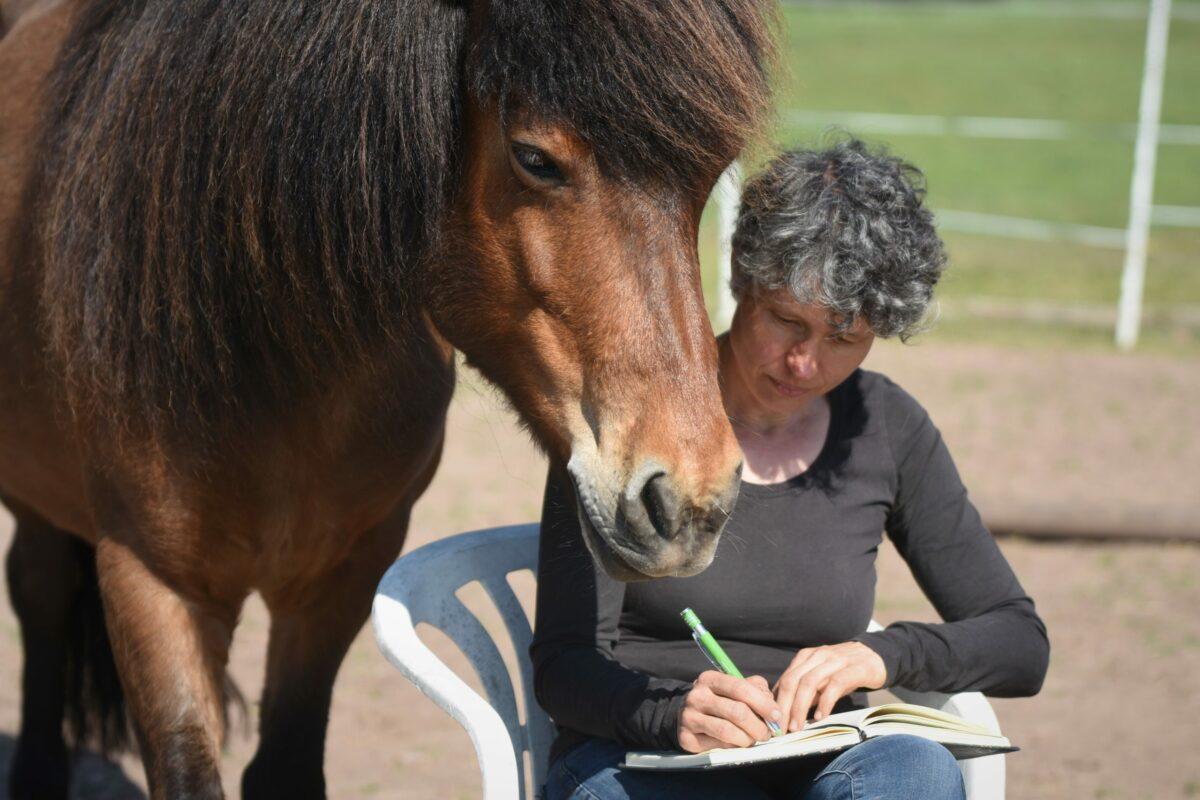 Mit dem Pferd ein Buch schreiben