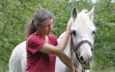 Wie du mit Jin Shin Jyutsu dein Tier in Harmonie bringen kannst