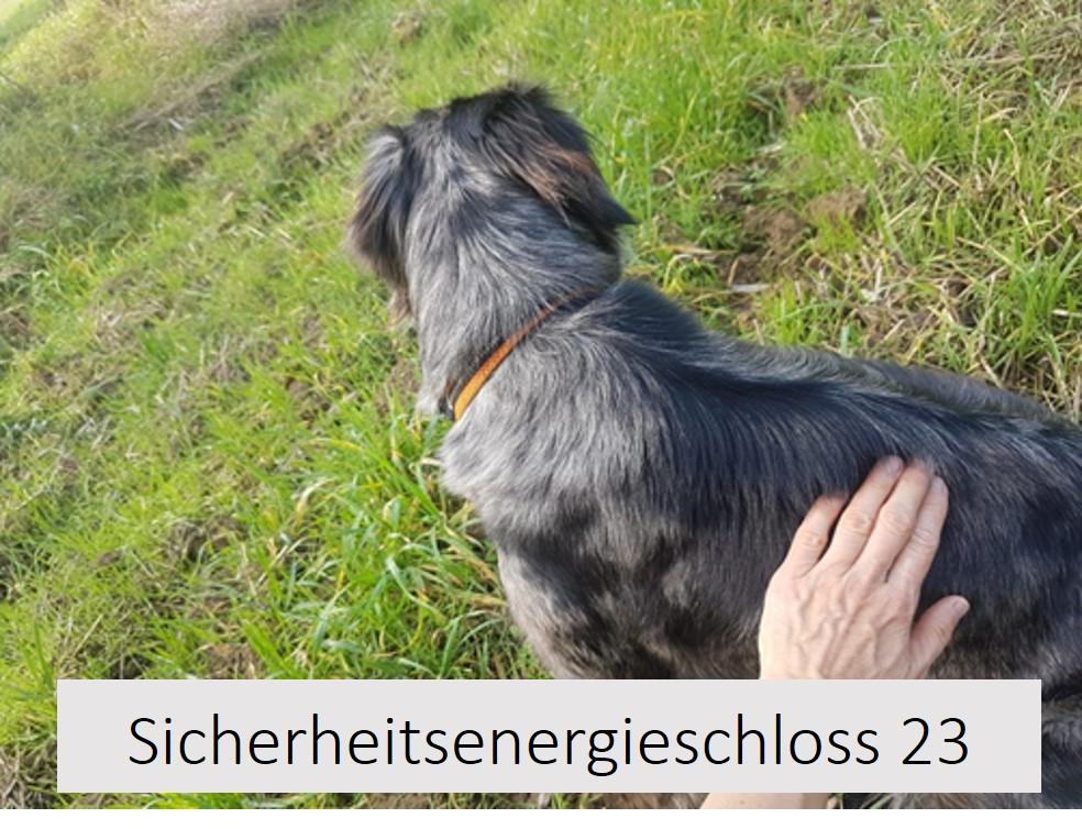 Lage Sicherheitsenergieschloss 23 Hund